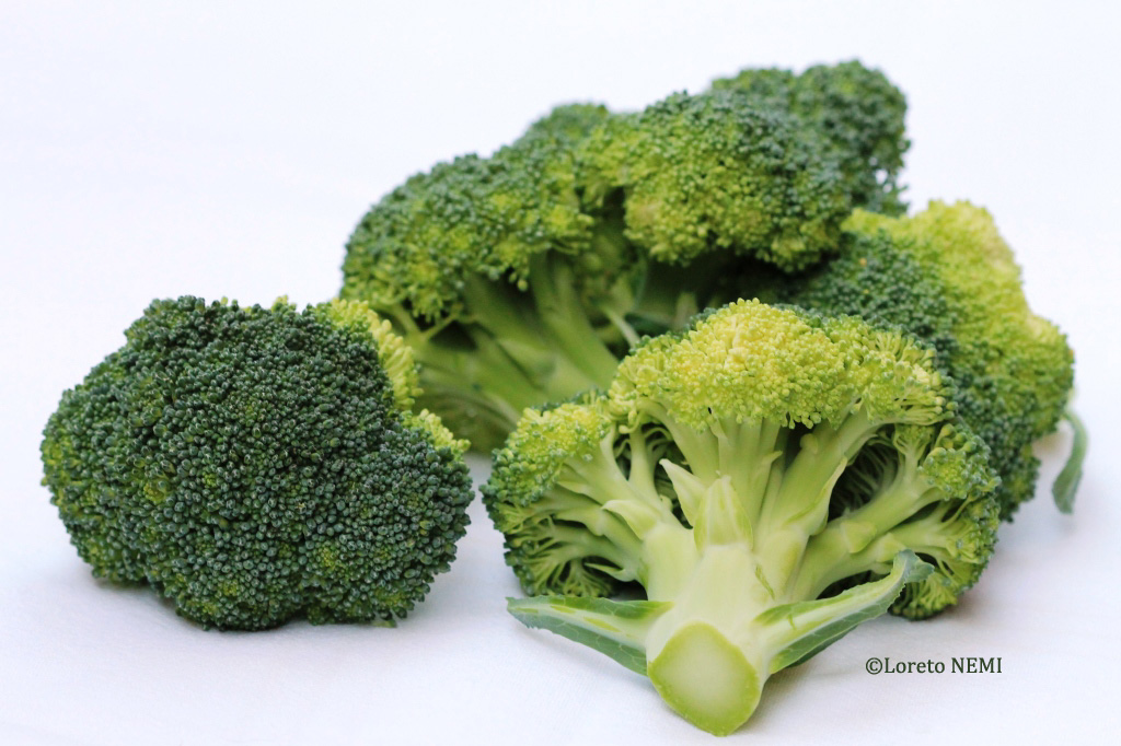 broccolo copia