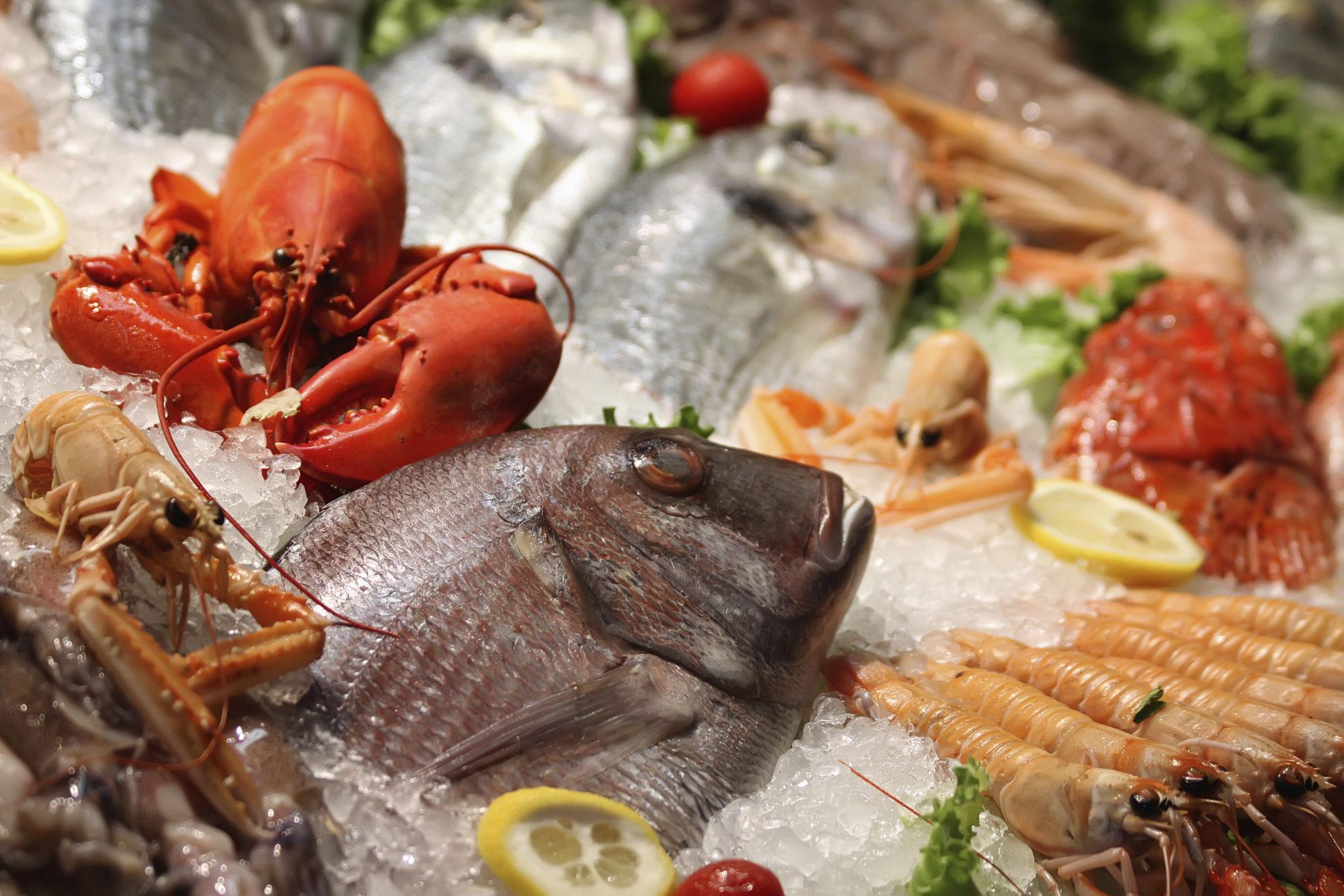 Pesci Molluschi E Crostacei Piccola Guida Alla Scelta Dieta Nutrizione Benessere Salute Dr Loreto Nemi Dietista Nutrizionista Roma